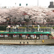 ■We also offer a variety of sightseeing courses■