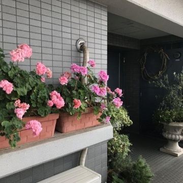 Flower School & Boutique Studio Hiro紹介画像
